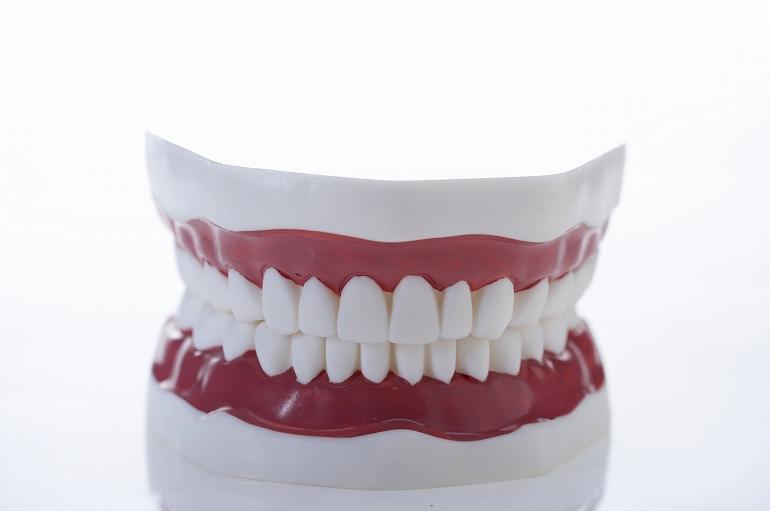 歯並びだけでなく、歯の形も整えたい